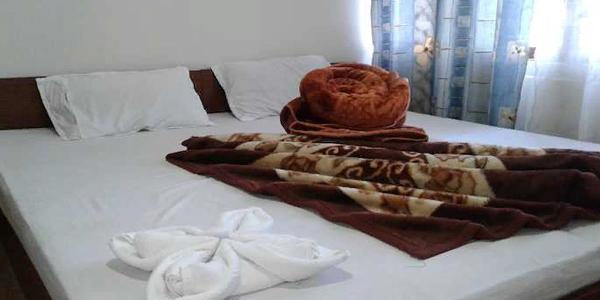 Hotel Pine Wood