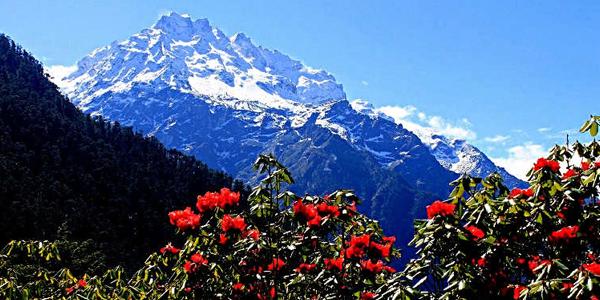 Darjeeling - Pelling - Gangtok *
