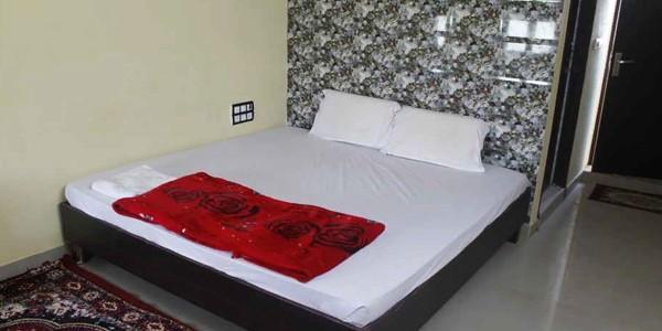 Hotel Ashoka Castle Deluxe