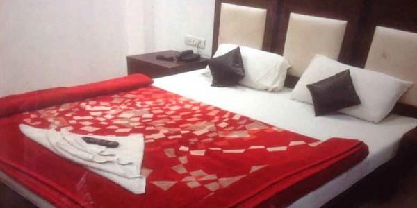 Hotel Maharaja Castle