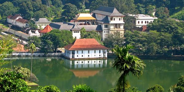 Charm of Sri Lanka