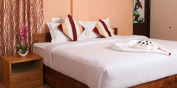 Hotel Pine Tree