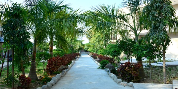 Clarissa Resort