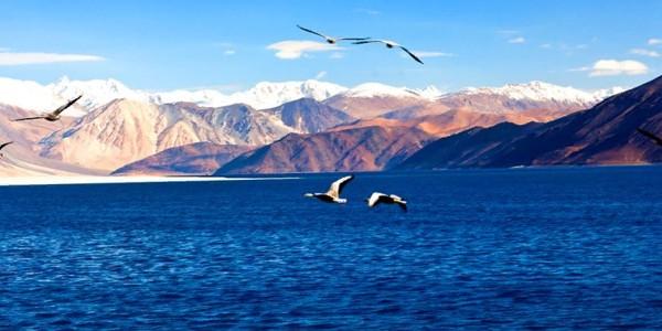 Leh Ladakh with Kargil *